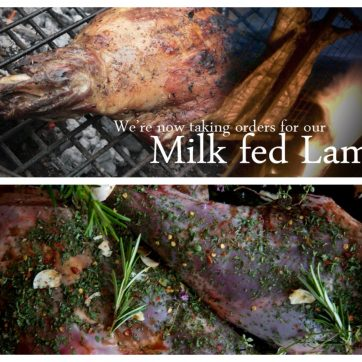 milk fed lamb box